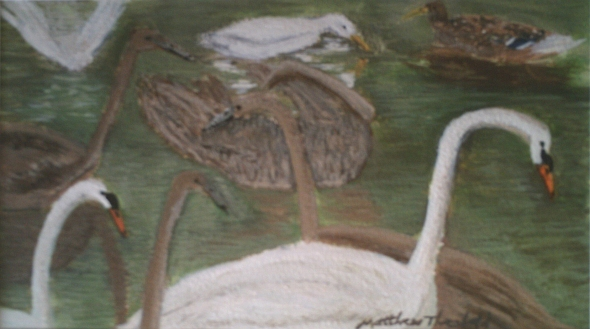 Swans, Cygnets and Ducks on the Water
