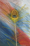Peacock Feather, 2015