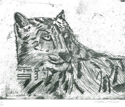Xuebao, Snow Leopard